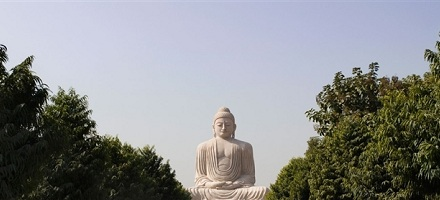 The Great Buddha Statue